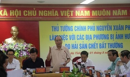 Vietnam premier urges review of 'all facilities' following mass fish deaths | Business News & Finance | Scoop.it
