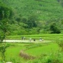 Son Dong Bac Giang Travel - Information, Pictures, Map | Vietnam tour | Vietnam tour | Scoop.it