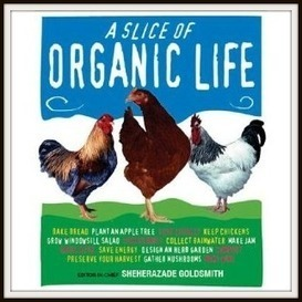 A Slice of Organic Life – A Is For April…And Asparagus | Food. (Just ... | being vegetarian | Scoop.it