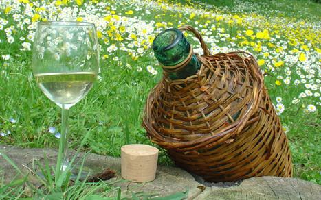 Vendita Vino sfuso in damigiana rosso o bianco - Vini di qualità | Vino e dintorni: a proposito di vini, bottiglie, tappi, etichette, bicchieri, il vino in cucina e... | Scoop.it