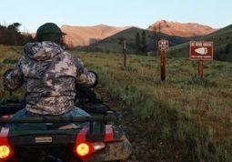 Fate of Yellowstone grizzlies tied to key foods - Billings Gazette | Teton Floats Fly Fishing | Scoop.it