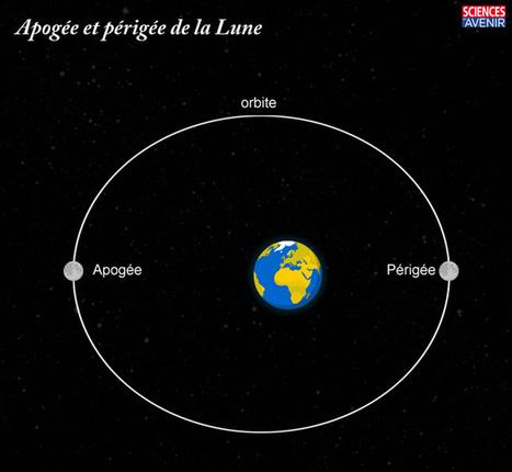 Super Lune : pourquoi notre satellite paraît-il plus gros ? - Sciences et Avenir | Espace | Scoop.it