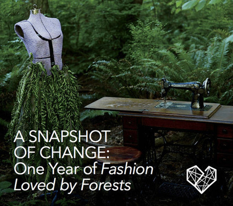 Fashion industry making progress in cutting deforestation from clothing   Responsible supply chains   Scoop.it