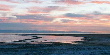 La lente agonie de la Salton Sea | Histoire culturelle - Culture, espaces, environnement | Scoop.it