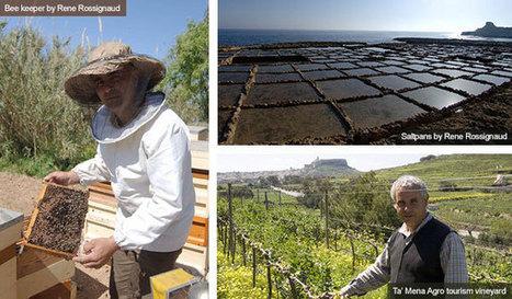 Food & drink in Gozo. Insiders travel guide to food & drink in Gozo from responsibletravel.com | Gozo Life | Scoop.it