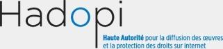 Piratage de musique numérique: premier bilan positif pour l'Hadopi | Music business | Scoop.it