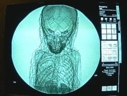 Coffin reveals secret past of mummified 'royal boy' | Égypt-actus | Scoop.it