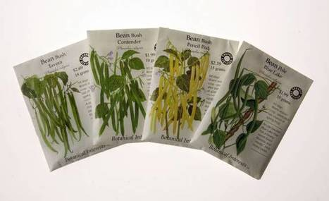 Garden Calendar: Native plants and their fancy hybrids work best in Dallas ... - Dallas Morning News | In the garden | Scoop.it