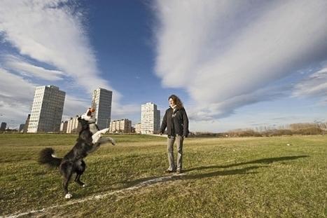 modelo de ciudad 'verde' - El Mundo.es | Ecología sostenible | Scoop.it
