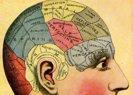Phrenology and 'Brain Mapping' as Historical References | visual data | Scoop.it