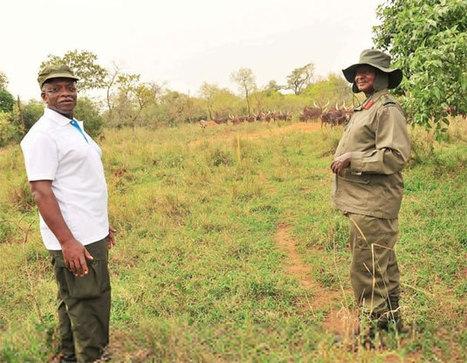 NRM power struggle escalates | Trending in Uganda | Scoop.it