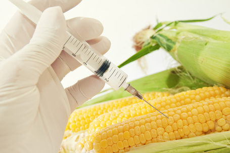 Why Are Wal Mart and Big Food Lobbying the FDA for a GMO Labeling Law? -- Controlling the Rising Tide | YOUR FOOD, YOUR HEALTH: Latest on BiotechFood, GMOs, Pesticides, Chemicals, CAFOs, Industrial Food | Scoop.it