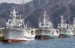 Tsunami : les pêcheurs japonais frappés de plein fouet | Asie.en24heures.com | Japon : séisme, tsunami & conséquences | Scoop.it