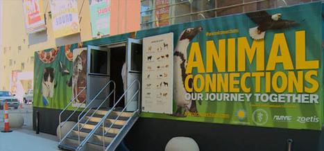 Veterinarians celebrated in traveling Smithsonian exhibit | Pet-Related News | Scoop.it