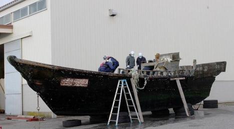 Japon : découverte de mystérieux bateaux abritant des cadavres | Détective de l'étrange | Scoop.it