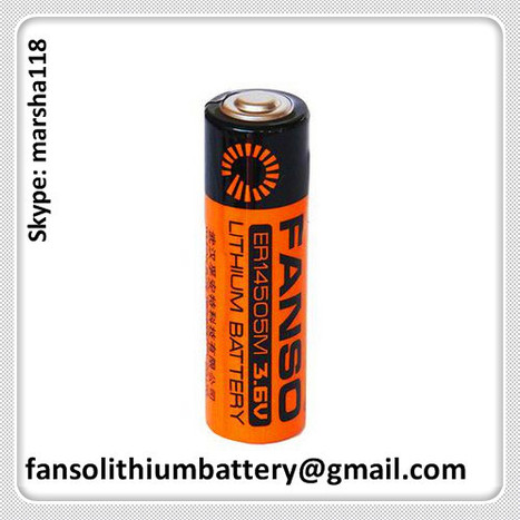 ER14505M AA 3.6V Primary Lithium Battery with High Current for Water Meter | FANSO Lithium Battery 3.6v & 3.0v Manufactuer of China. Contact Marsha if you need with fansolithiumbattery@gmail.com or skype: marsha118 | Scoop.it
