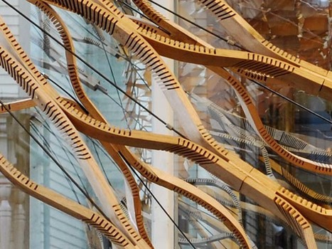 Kerf-Based Complex Wood Systems | Aural Complex Landscape | Scoop.it