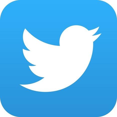 Mieux utiliser Twitter avec ces 5 extensions Chrome | Digital - Geek - Social média - Cloud ... | Scoop.it