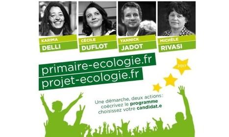 Primaire EELV : posez vos questions à Yannick Jadot et Michèle Rivasi - BFM TV | Actualités écologie | Scoop.it