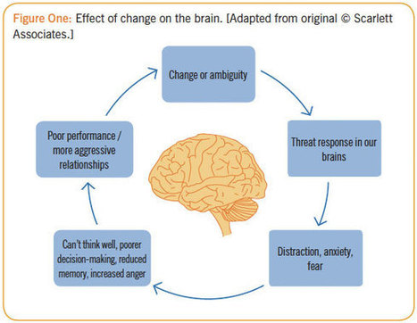 Neuroscience: Helping employees through change | Coaching & Neuroscience | Scoop.it