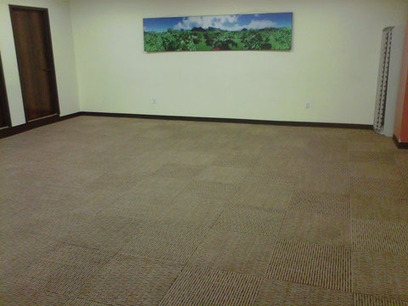 Professional Carpet Cleaners NYC   Green Solutions Carpet Cleaning   Green Solution Carpet Cleaning   Scoop.it