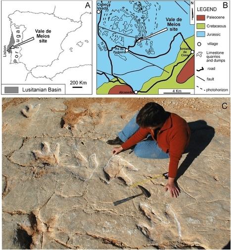 Megalosaurus et les vacances de Monsieur Bulot : : Le Dinoblog | C@fé des Sciences | Scoop.it