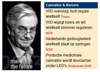 De VVD houdt koers! | Medicinale-cannabis | Scoop.it