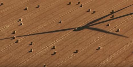 Paroles d'agriculteurs | Agriculture biologique | Scoop.it