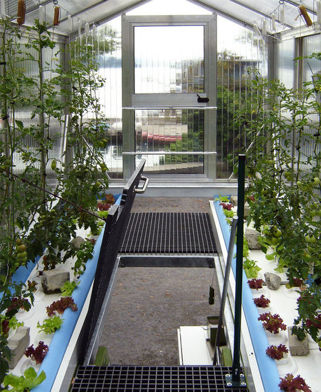 Shipping Container Greenhouse is Awesome Urban Farm-In-A-Box | garden farm | Scoop.it