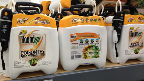 """So #Monsanto #Roundup """"probably"""" causes #cancer. This means what, exactly? 
