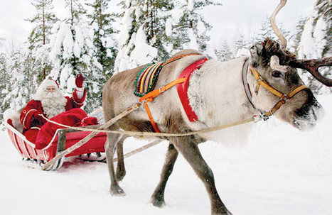 Lapland: take the reins on a visit to Santa's Finnish grotto | Finland | Scoop.it