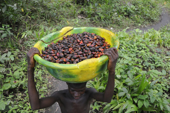 Liberia: Company resurvey resisted in Grand Bassa | Daraja.net | Scoop.it