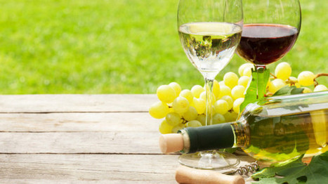 Lower alcohol wines: What are the opportunities - and the challenges? | Grande Passione | Scoop.it
