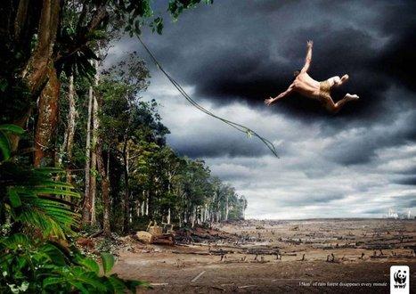 20 campagnes publicitaires chocs qui nous font réfléchir sur les problèmes environnementaux | Water & Energy for all | Scoop.it