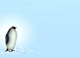 Penguin 2.0 and what it means for SEO | Internet marketing and social media with WSI | Scoop.it