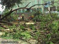 Lamento en Vinces por tala de árboles - JUL. 06, 2011 - País - EL UNIVERSO   LA DESFORESTACION DE ARBOLES   Scoop.it