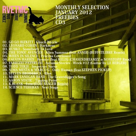 Rendez-Vous En Terre Mal Connue – RVETMC Monthly Selection January 2011 : The Freebies, Episode 3. | Musical Freedom | Scoop.it