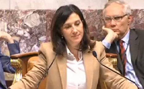 À l'Assemblée nationale, «Madame le président» contre «Monsieur la députée» | 16s3d: Bestioles, opinions & pétitions | Scoop.it