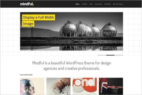 Mindful is a WordPress Theme by Theme Trust | WP Daily Themes | mindfull | Scoop.it