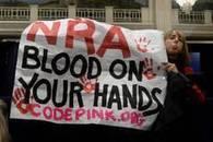 Usa, lobby insistono: 'Armi nelle scuole' - Mondo - ANSA.it   Criminologia e Psiche   Scoop.it