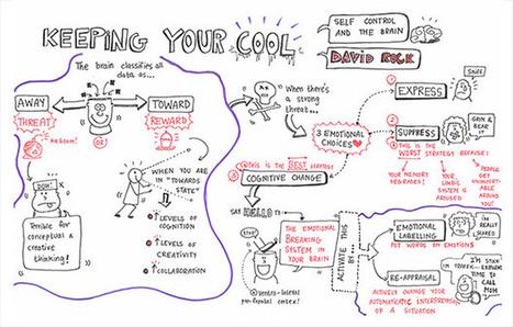 Visual Capture: Keeping Your Cool | XPLANE xBlog | facilitation | Scoop.it