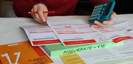 Assurance-vie: près de 23 milliards d'euros collectés en onze mois | assurance-vie en France | Scoop.it