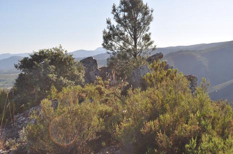 Home de Pedra | Arqueología, Historia Antigua y Medieval - Archeology, Ancient and Medieval History byTerrae Antiqvae (Grupos) | Scoop.it