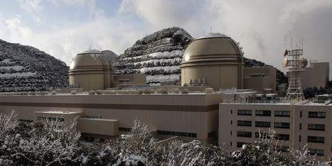 Des réacteurs japonais pourraient être relancés cet automne | Sustain Our Earth | Scoop.it