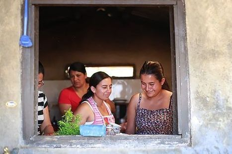 Women in Colombia's Coffee-Growing Families Are Taking a Seat at the Table | Coffee News | Scoop.it