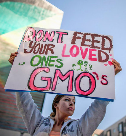 Starve Your Loved Ones to Death! @Label_GMOs @FightAgainstGMO @Greenpeace   Funny Science   Scoop.it
