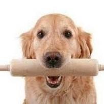 Pet Store | Dog Grooming Shop in Peachtree City | Scoop.it