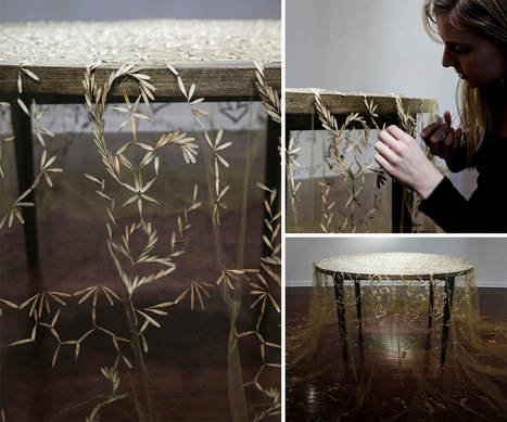 Heirloom: A #Tablecloth Created with #Lace-like Patterns of Collected #Seeds by Rena Detrixhe. #art | Luby Art | Scoop.it