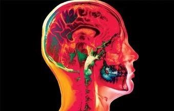 Your Amazing Brain -- National Geographic Kids | Brainiacs | Scoop.it