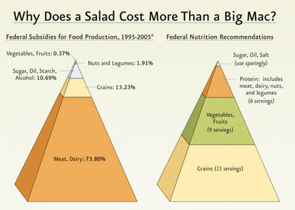 Why does a salad cost more than a Big Mac ? | Nouveaux paradigmes | Scoop.it